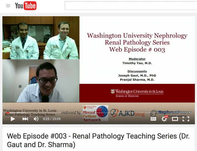 Renal Pathology YouTube Episode #2 Released - Division of