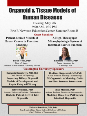 Upcoming WU Symposium Brings Together Researchers Interested in Organoid Culture