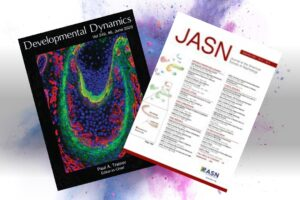 Drs. Meei-Hua Lin and Andrew Malone Each Score Second Journal Cover in Two Years