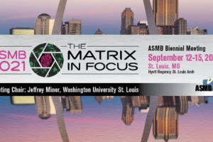 St. Louis-Hosted ASMB Meeting, Chaired by Dr. Jeffrey Miner, was a Success